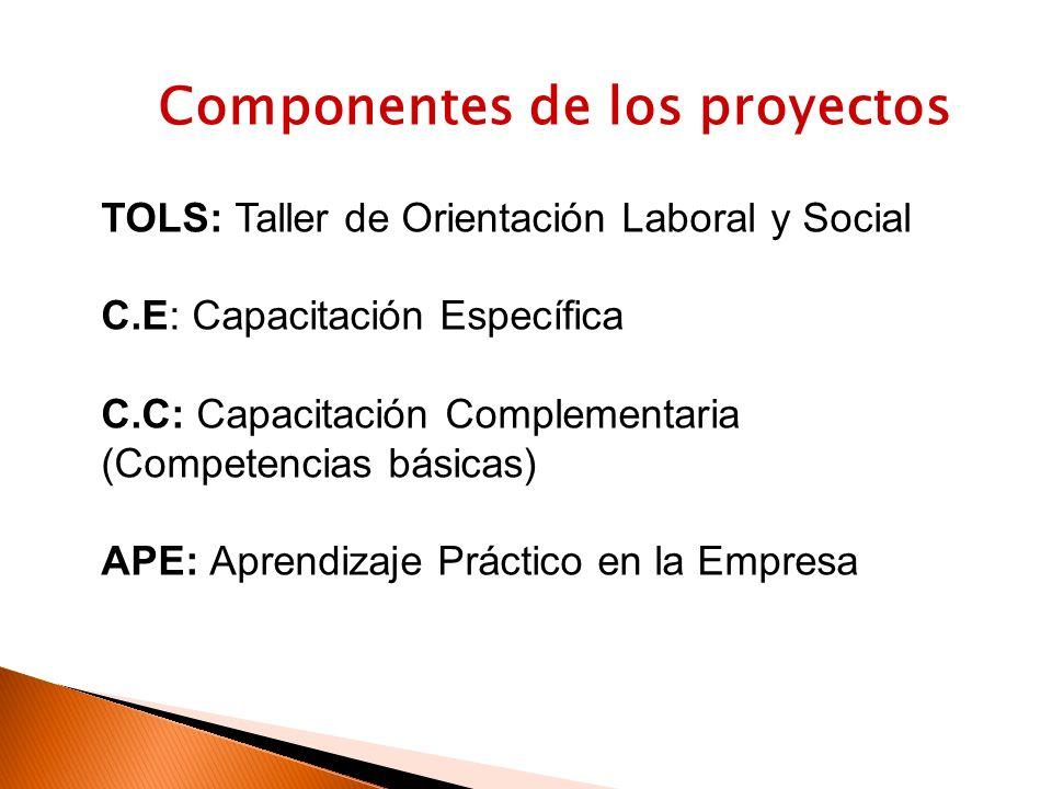 Componentes de los proyectos TOLS: Taller de Orientación Laboral y Social C.E: Capacitación Específica C.C: Capacitación Complementaria (Competencias