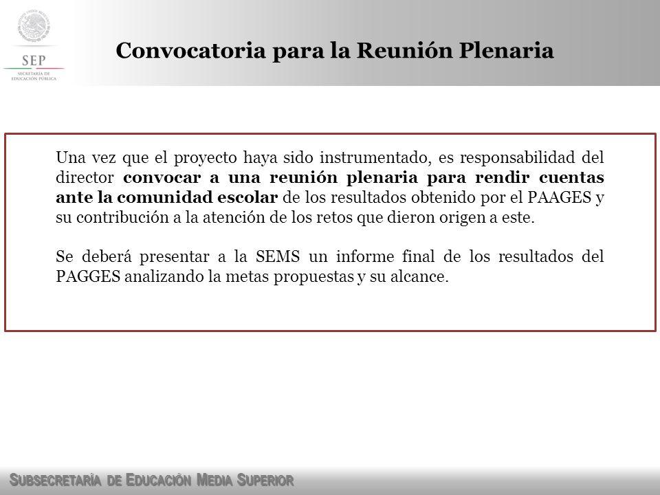 S UBSECRETARÍA DE E DUCACIÓN M EDIA S UPERIOR Convocatoria para la Reunión Plenaria Una vez que el proyecto haya sido instrumentado, es responsabilida