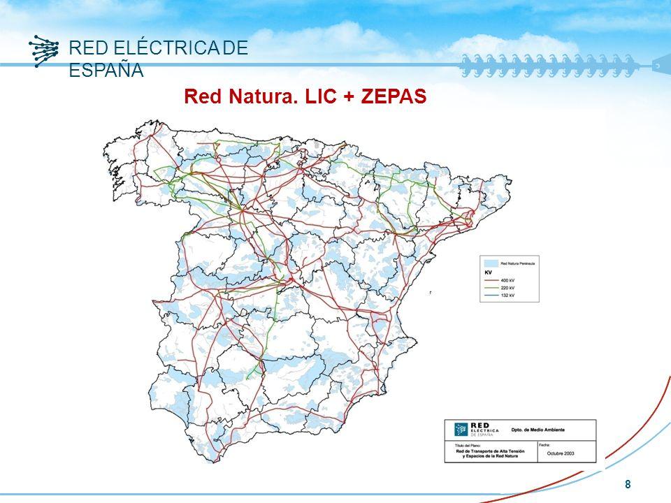 RED ELÉCTRICA DE ESPAÑA 8 Red Natura. LIC + ZEPAS