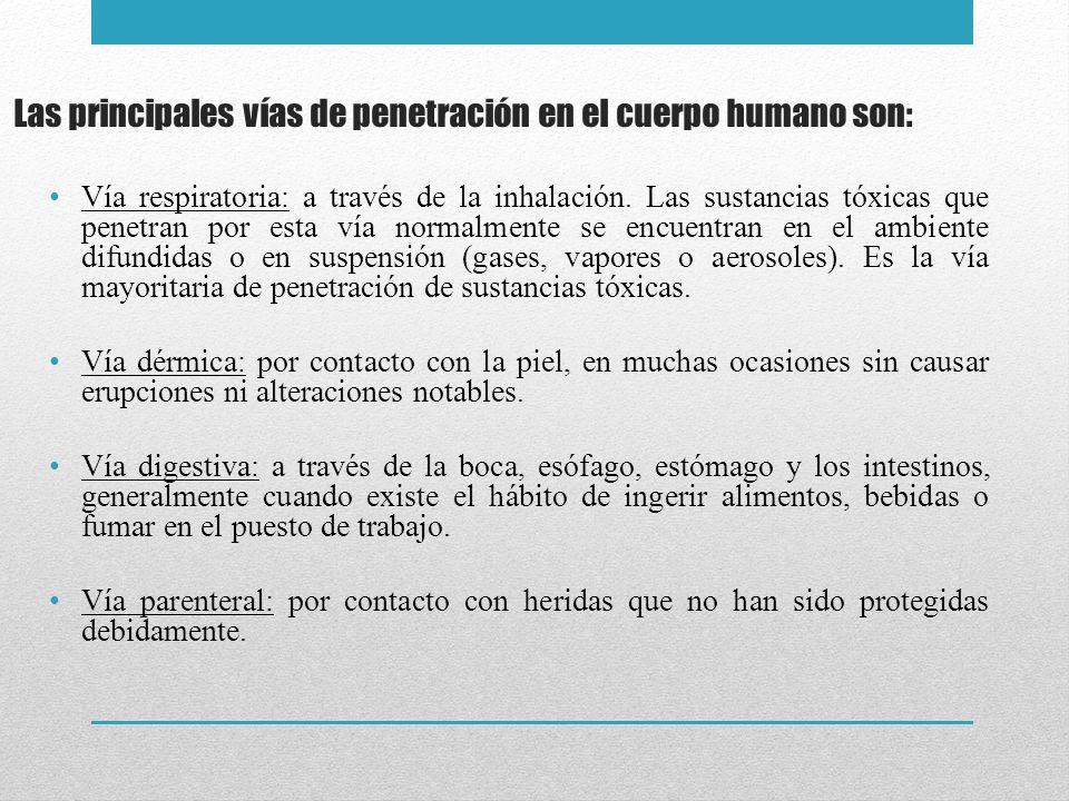 Las principales vías de penetración en el cuerpo humano son: Vía respiratoria: a través de la inhalación. Las sustancias tóxicas que penetran por esta