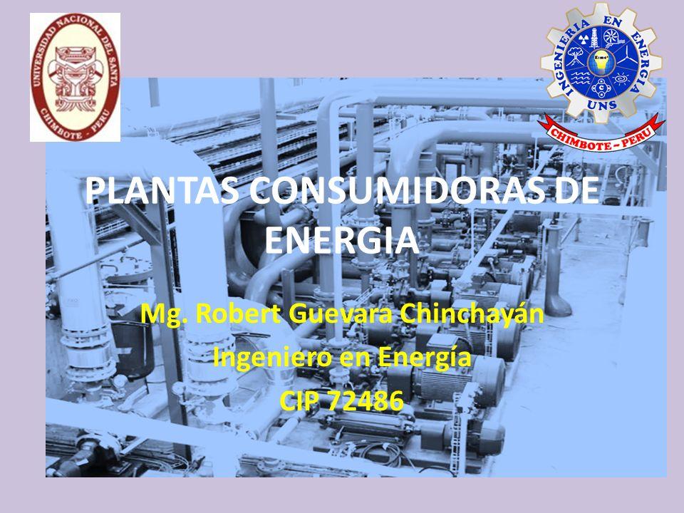 PLANTAS CONSUMIDORAS DE ENERGIA Mg. Robert Guevara Chinchayán Ingeniero en Energía CIP 72486