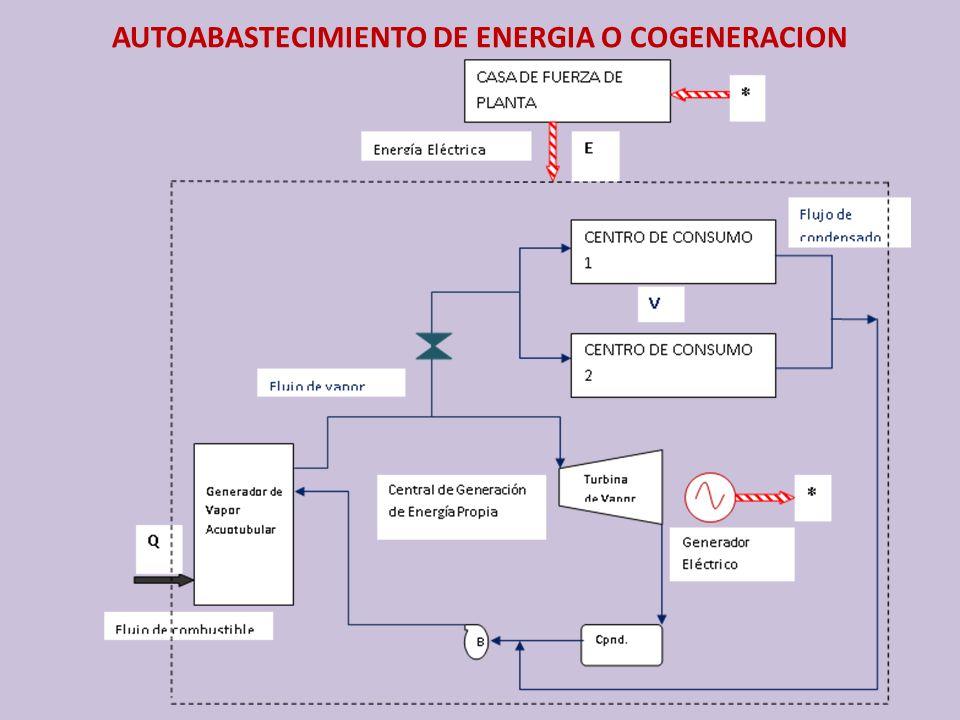 AUTOABASTECIMIENTO DE ENERGIA O COGENERACION