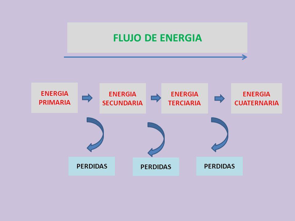 ENERGIA PRIMARIA ENERGIA CUATERNARIA ENERGIA TERCIARIA ENERGIA SECUNDARIA PERDIDAS FLUJO DE ENERGIA