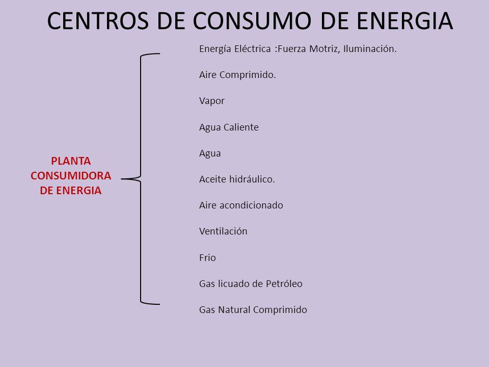 CENTROS DE CONSUMO DE ENERGIA PLANTA CONSUMIDORA DE ENERGIA Energía Eléctrica :Fuerza Motriz, Iluminación. Aire Comprimido. Vapor Agua Caliente Agua A