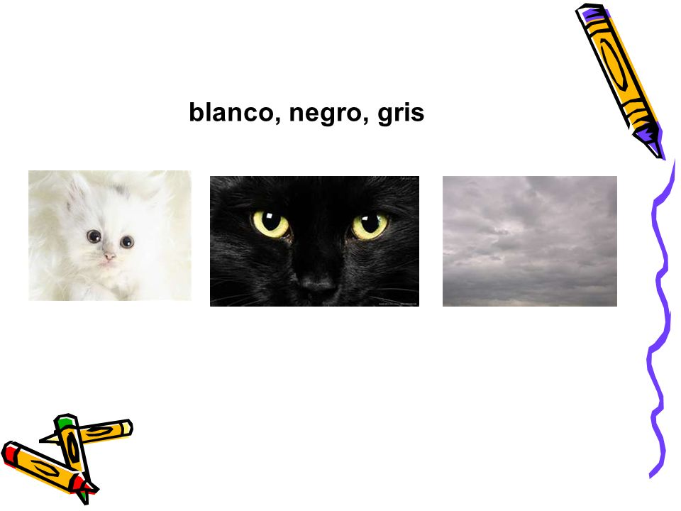 blanco, negro, gris