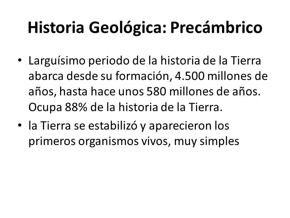 Historia Geológica: Precámbrico Larguísimo periodo de la historia de la Tierra abarca desde su formación, 4.500 millones de años, hasta hace unos 580