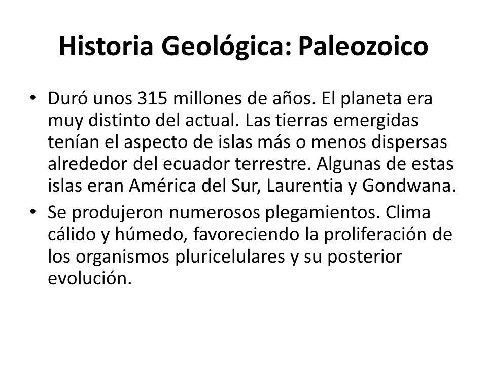 Historia Geológica: Paleozoico Duró unos 315 millones de años. El planeta era muy distinto del actual. Las tierras emergidas tenían el aspecto de isla
