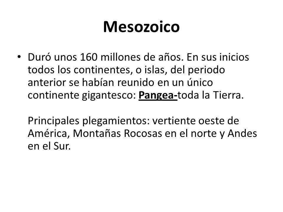 Mesozoico Duró unos 160 millones de años. En sus inicios todos los continentes, o islas, del periodo anterior se habían reunido en un único continente