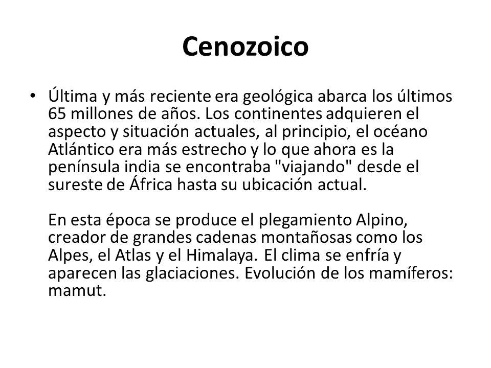 Cenozoico Última y más reciente era geológica abarca los últimos 65 millones de años. Los continentes adquieren el aspecto y situación actuales, al pr
