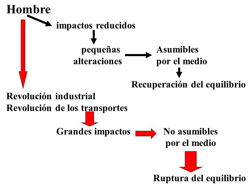 Hombre impactos reducidos pequeñas Asumibles alteraciones por el medio Recuperación del equilibrio Revolución industrial Revolución de los transportes