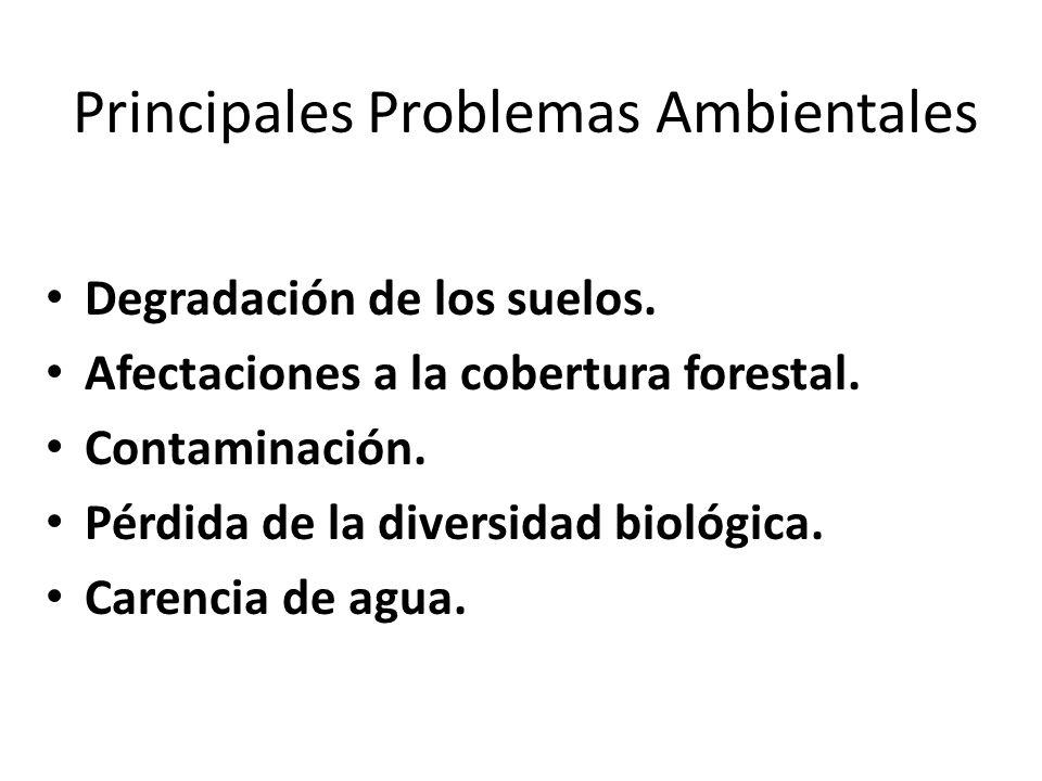 Principales Problemas Ambientales Degradación de los suelos. Afectaciones a la cobertura forestal. Contaminación. Pérdida de la diversidad biológica.