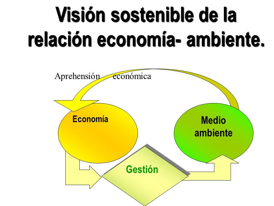 Visión sostenible de la relación economía- ambiente. Economía Aprehensión económica Medio ambiente Gestión