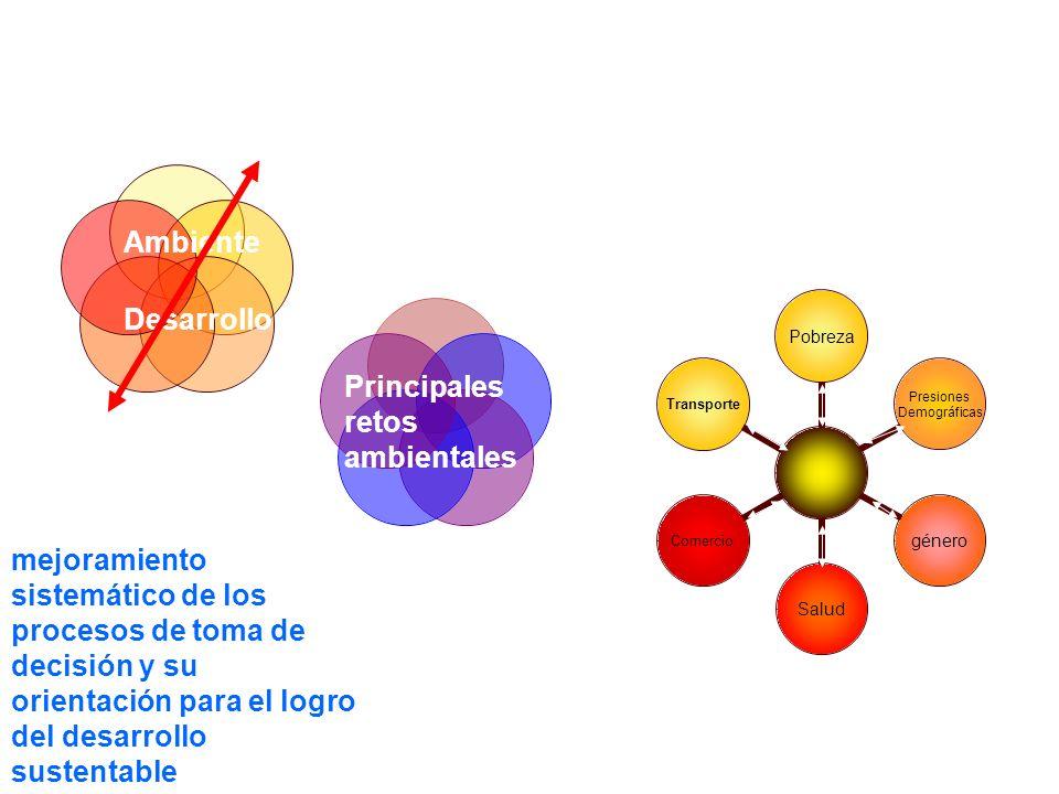 INTERRELACIONES Principales retos ambientales Ambiente Desarrollo Ambiente Sociedad múltiples procesos biofísicos y sociales requieren ser interpretad