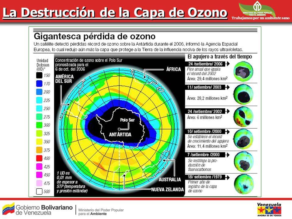 Trabajamos por un ambiente sano La Destrucción de la Capa de Ozono