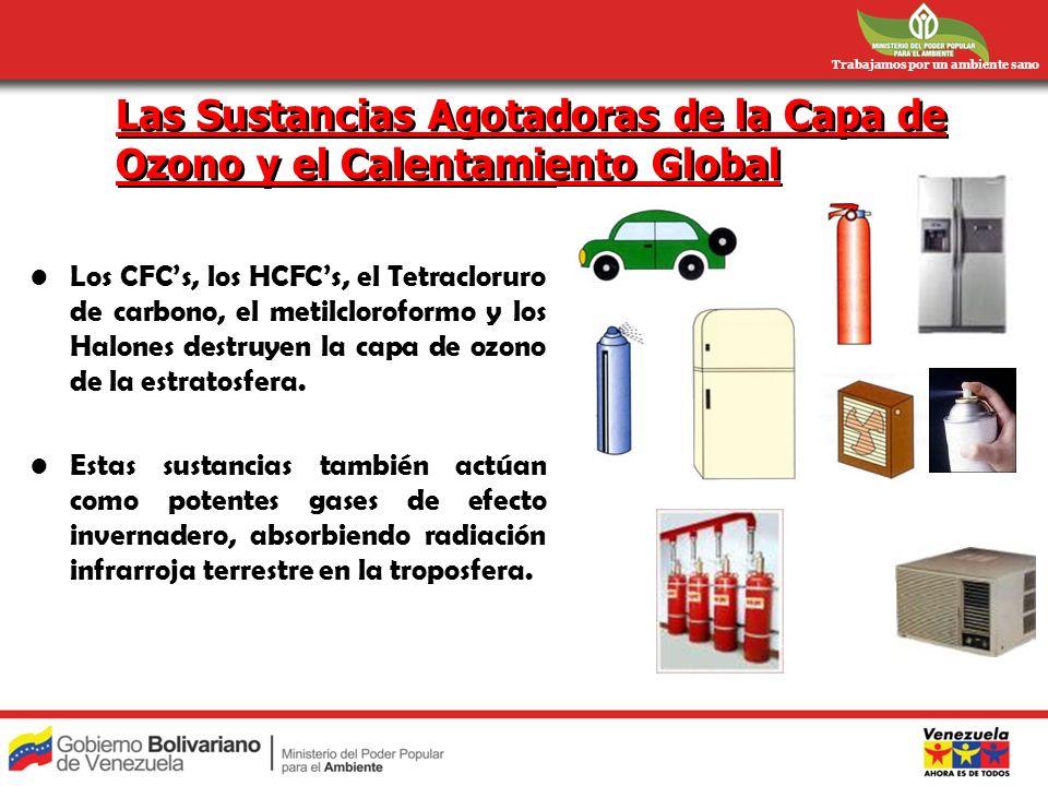Trabajamos por un ambiente sano Las Sustancias Agotadoras de la Capa de Ozono y el Calentamiento Global Los CFCs, los HCFCs, el Tetracloruro de carbon