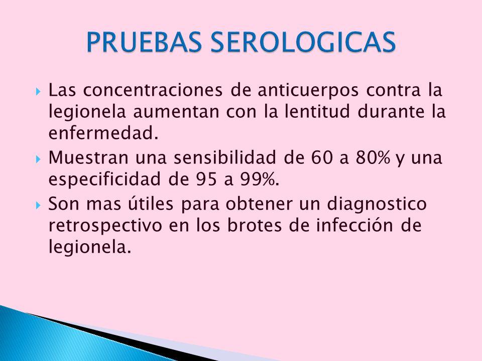 Las concentraciones de anticuerpos contra la legionela aumentan con la lentitud durante la enfermedad. Muestran una sensibilidad de 60 a 80% y una esp