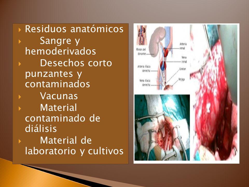 Residuos anatómicos Sangre y hemoderivados Desechos corto punzantes y contaminados Vacunas Material contaminado de diálisis Material de laboratorio y