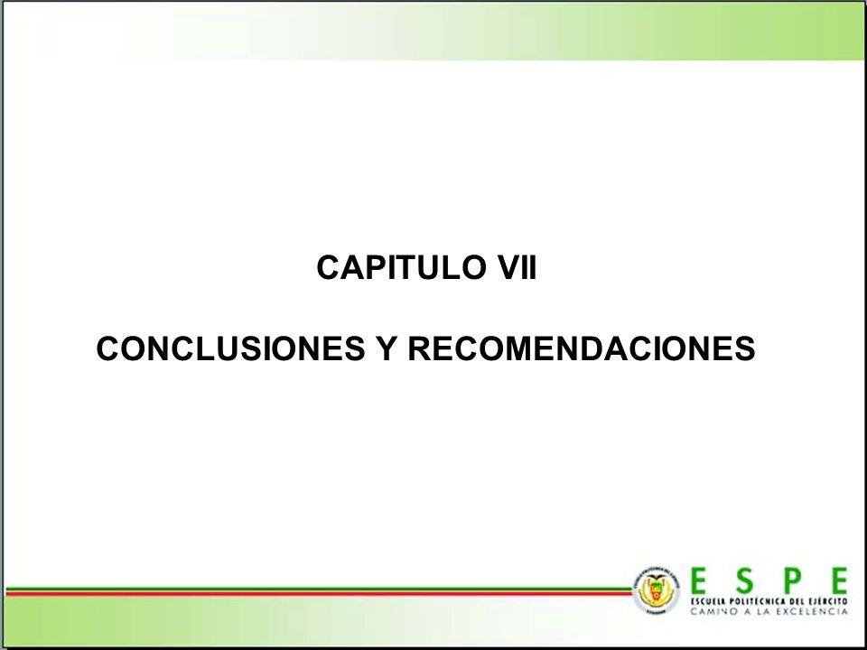 CAPITULO VII CONCLUSIONES Y RECOMENDACIONES