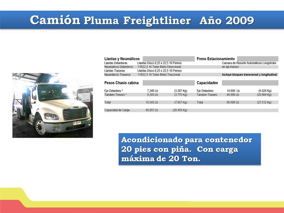 Camión Pluma Freightliner Año 2009 Acondicionado para contenedor 20 pies con piña.