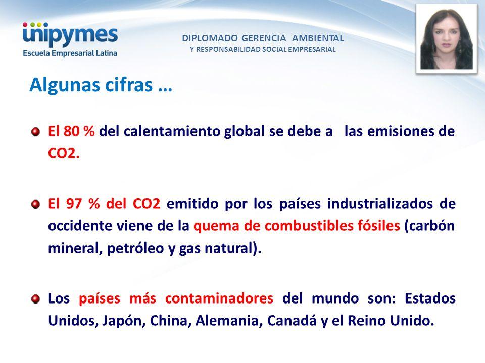 DIPLOMADO GERENCIA AMBIENTAL Y RESPONSABILIDAD SOCIAL EMPRESARIAL Conferencista foto El 80 % del calentamiento global se debe a las emisiones de CO2.