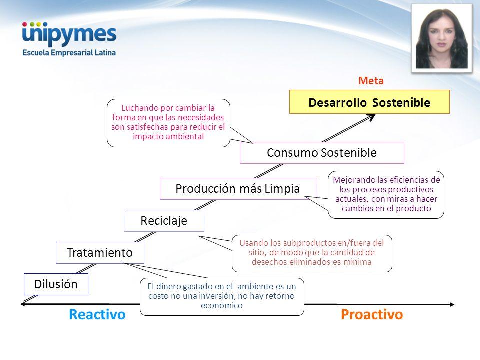 ProactivoReactivo Producción más Limpia Reciclaje Tratamiento Dilusión Desarrollo Sostenible Consumo Sostenible Mejorando las eficiencias de los proce