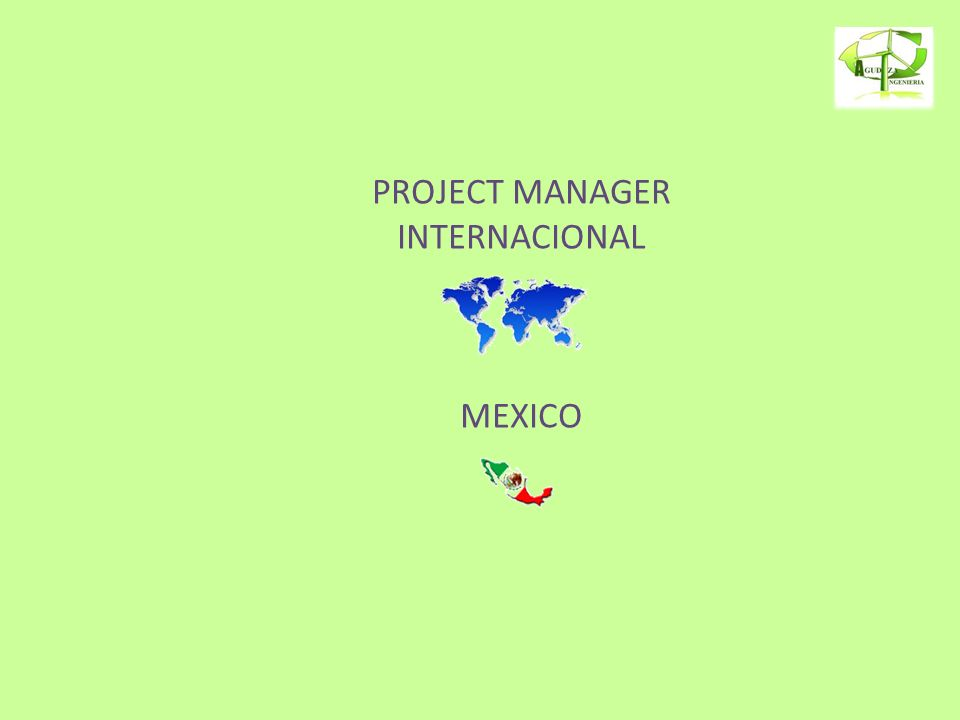 PROJECT MANAGER INTERNACIONAL MEXICO