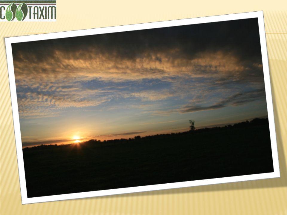 COOTAXIM PORTAL TURISTICO DEL EJE CAFETERO, puede viajar por tierra, disfrutando durante 2 horas y media de la nueva vía al Llano, una gran obra de ingeniería tan imponente, como el paisaje que surca y completamente segura para los visitantes.