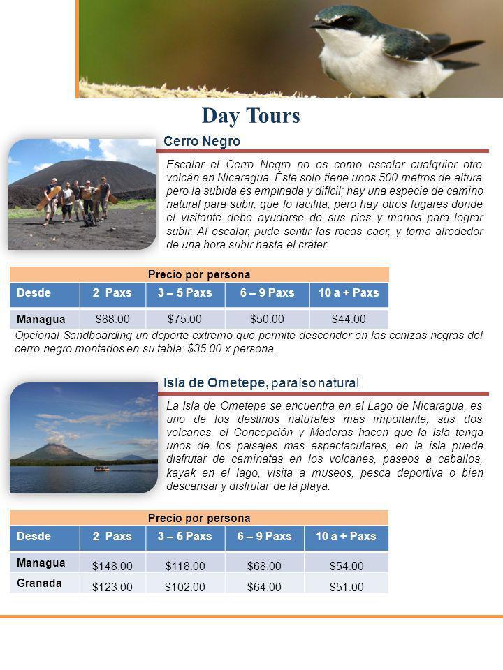 Day Tours Cerro Negro Escalar el Cerro Negro no es como escalar cualquier otro volcán en Nicaragua. Éste solo tiene unos 500 metros de altura pero la