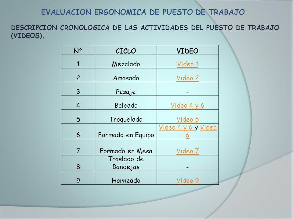 EVALUACION ERGONOMICA DE PUESTO DE TRABAJO DESCRIPCION CRONOLOGICA DE LAS ACTIVIDADES DEL PUESTO DE TRABAJO (VIDEOS). N°CICLOVIDEO 1MezcladoVideo 1 2A