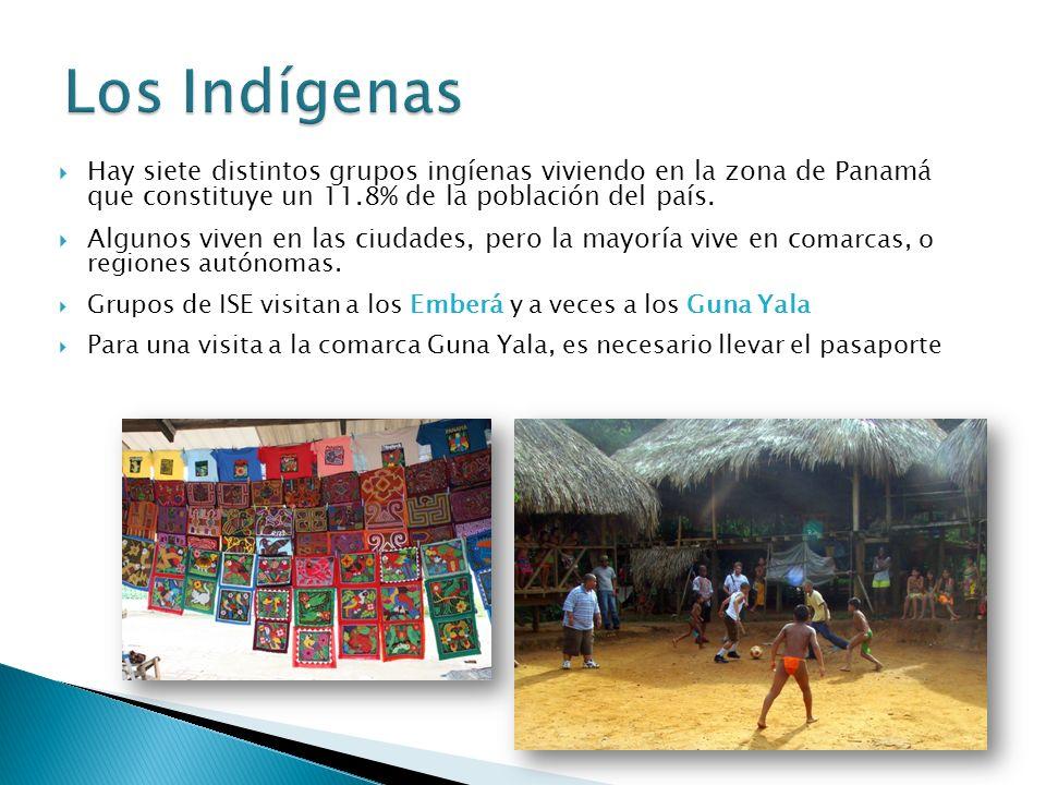 Hay siete distintos grupos ingíenas viviendo en la zona de Panamá que constituye un 11.8% de la población del país.