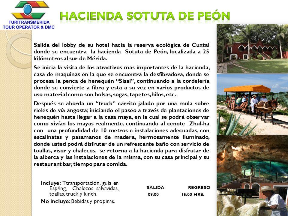 Salida del lobby de su hotel hacia la reserva ecológica de Cuxtal donde se encuentra la hacienda Sotuta de Peón, localizada a 25 kilómetros al sur de