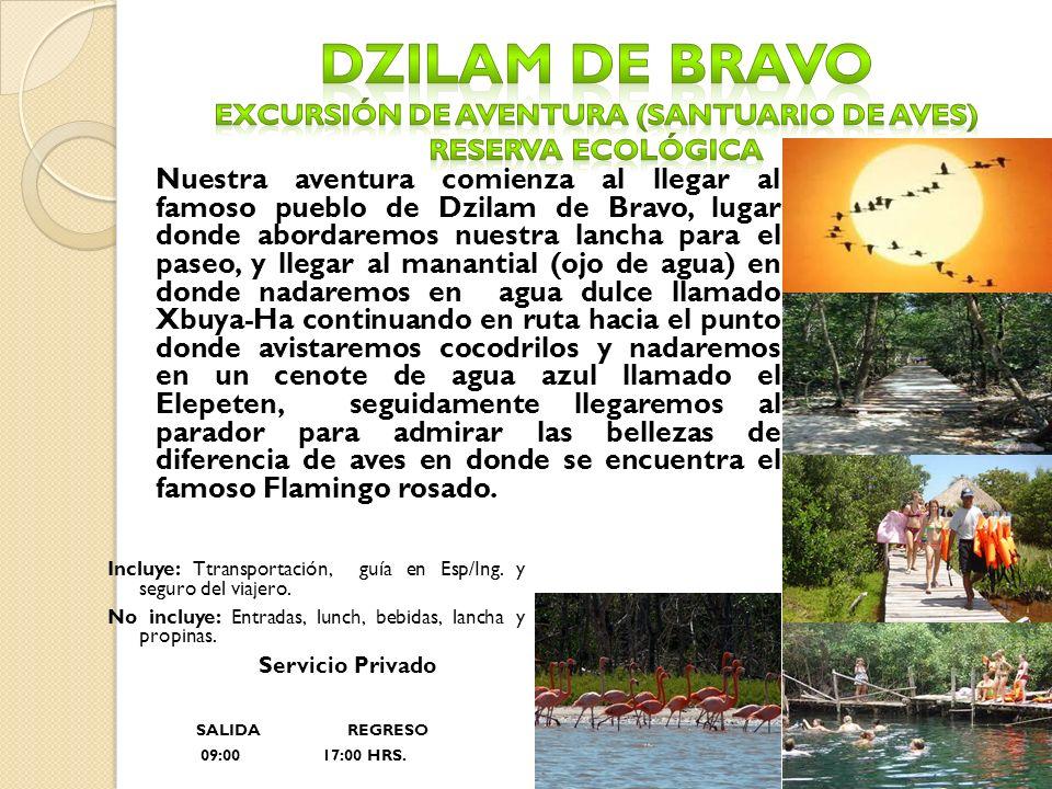 Nuestra aventura comienza al llegar al famoso pueblo de Dzilam de Bravo, lugar donde abordaremos nuestra lancha para el paseo, y llegar al manantial (