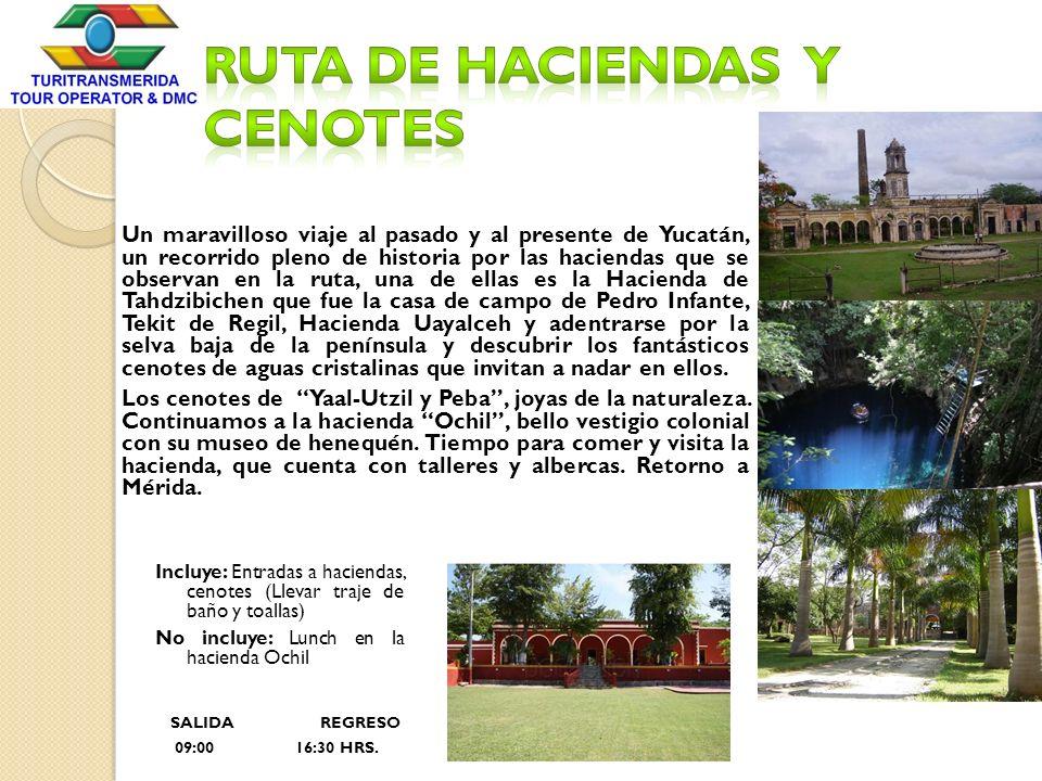 Un maravilloso viaje al pasado y al presente de Yucatán, un recorrido pleno de historia por las haciendas que se observan en la ruta, una de ellas es