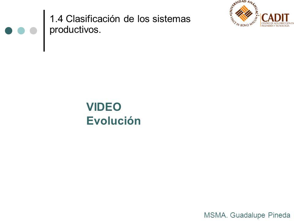 MSMA. Guadalupe Pineda 1.4 Clasificación de los sistemas productivos. VIDEO Evolución