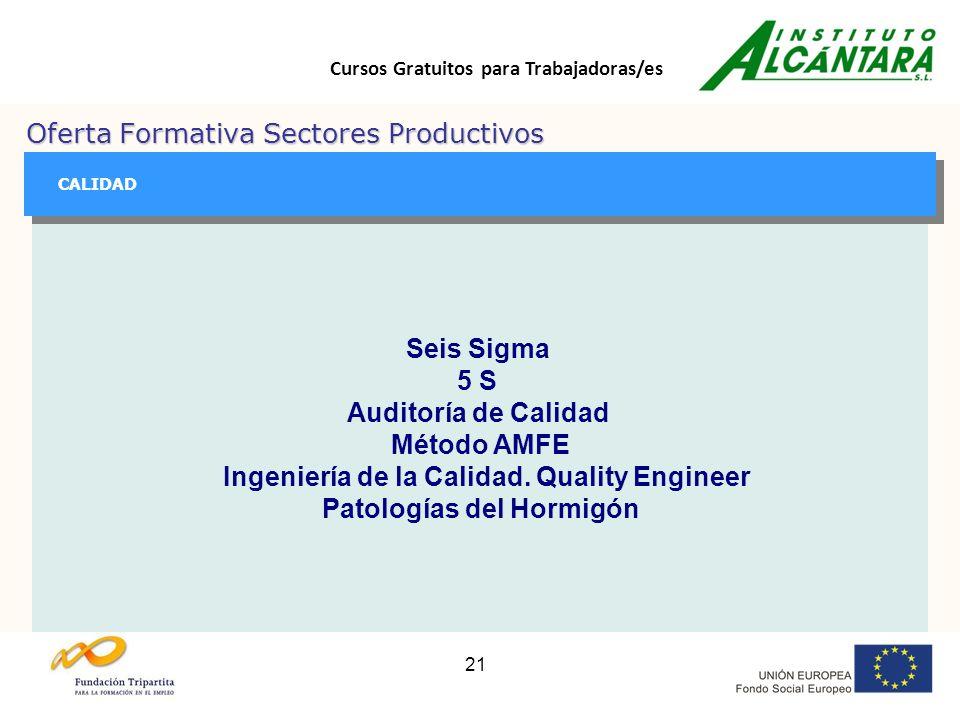 Cursos Gratuitos para Trabajadoras/es 21 Oferta Formativa Sectores Productivos GESTIÓN GESTIÓN CALIDAD Seis Sigma 5 S Auditoría de Calidad Método AMFE Ingeniería de la Calidad.