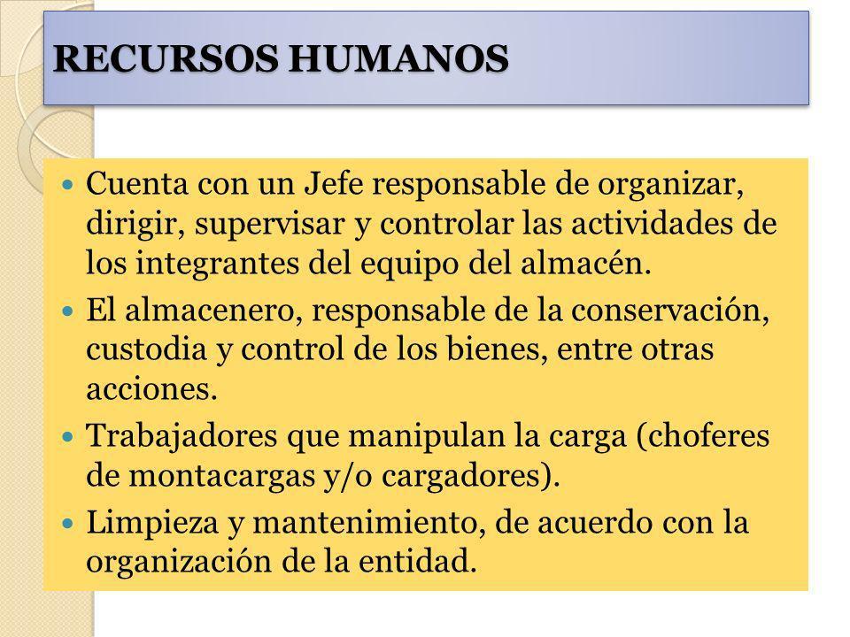 RECURSOS HUMANOS Cuenta con un Jefe responsable de organizar, dirigir, supervisar y controlar las actividades de los integrantes del equipo del almacé