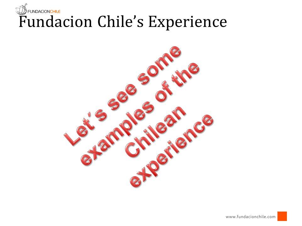 Fundacion Chiles Experience