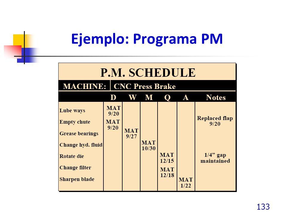Ejemplo: Programa PM 133