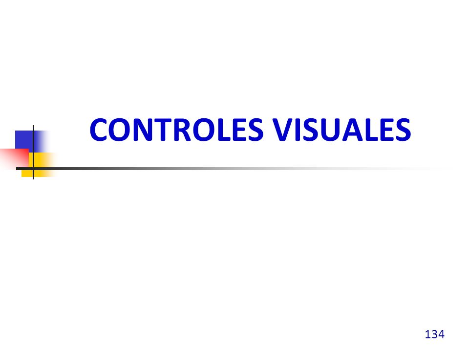 CONTROLES VISUALES 134