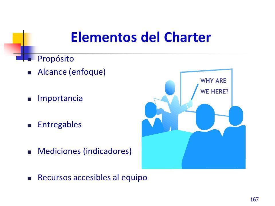 Elementos del Charter Propósito Alcance (enfoque) Importancia Entregables Mediciones (indicadores) Recursos accesibles al equipo 167