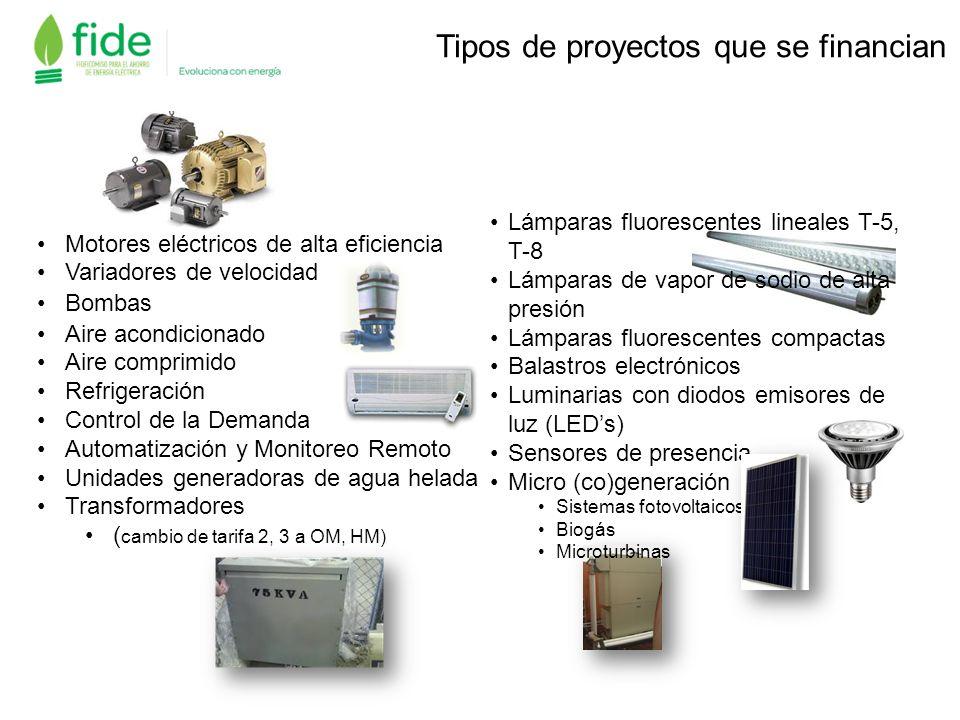 Motores eléctricos de alta eficiencia Variadores de velocidad Bombas Aire acondicionado Aire comprimido Refrigeración Control de la Demanda Automatiza