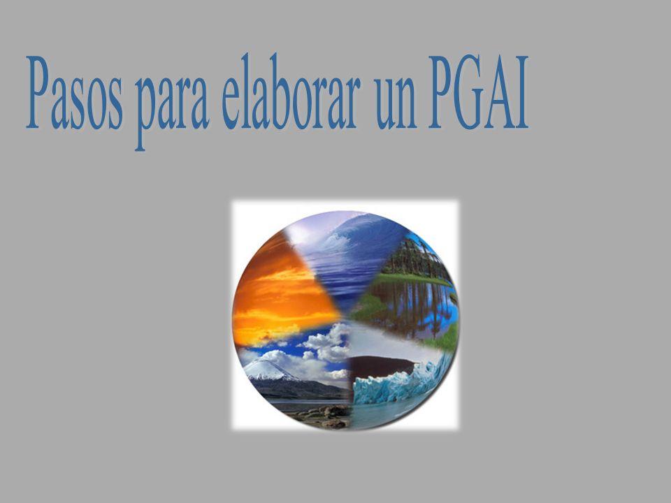 Pasos para la elaboración del PGAI 1.Compromiso del Jerarca 2.