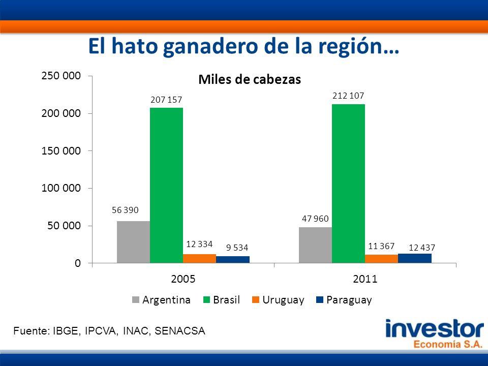 El hato ganadero de la región… Fuente: IBGE, IPCVA, INAC, SENACSA