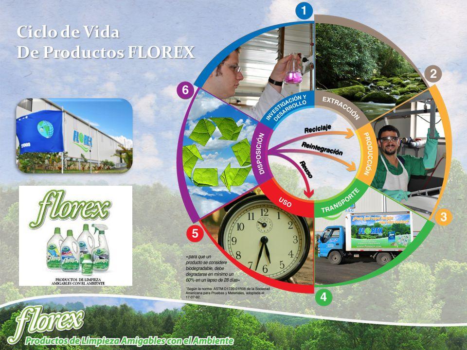 Ciclo de Vida De Productos FLOREX