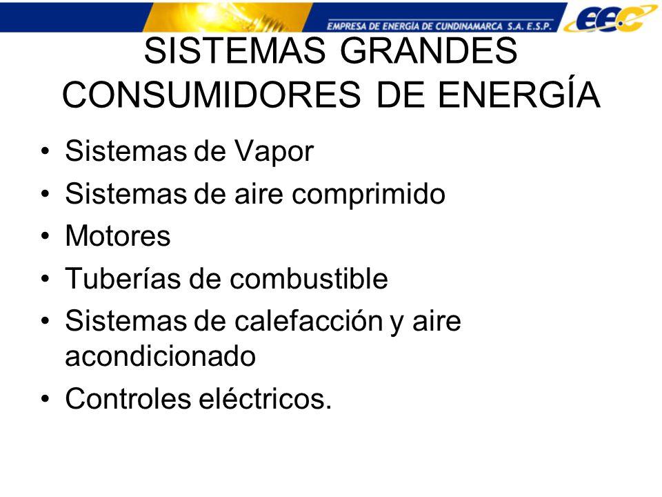SISTEMAS GRANDES CONSUMIDORES DE ENERGÍA Sistemas de Vapor Sistemas de aire comprimido Motores Tuberías de combustible Sistemas de calefacción y aire
