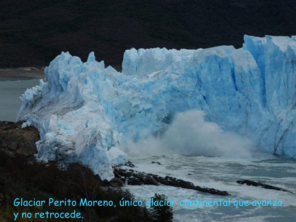 Con la subida de las temperaturas desaparecen los hielos perpetuos. Los glaciares no avanzan, retroceden.