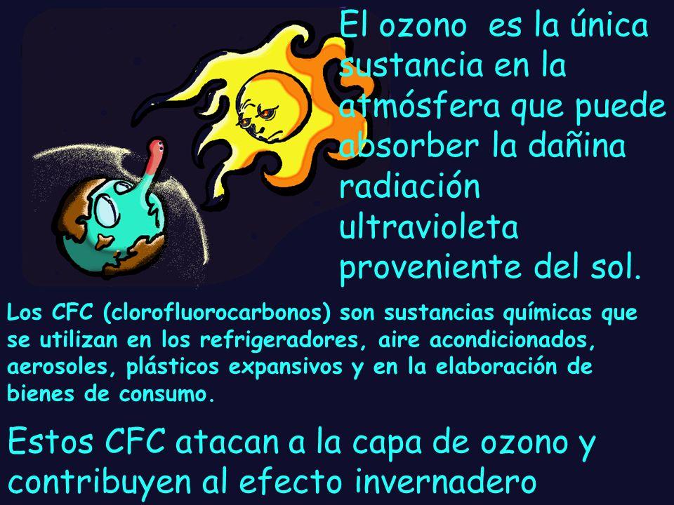 La capa de ozono es un delgado escudo de gas que rodea la tierra y la protege de los peligrosos rayos del sol. Gracias a esta capa es posible la vida
