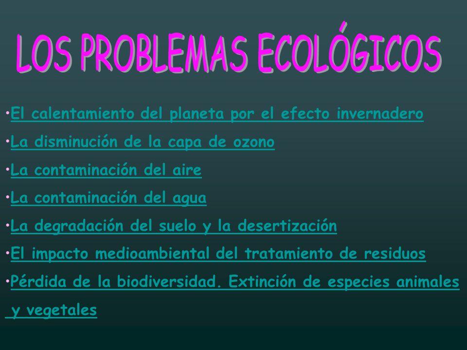 Ser ecologista significa sentirse responsable del estado de salud del planeta y actuar para proteger unos recursos que son limitados y escasos.