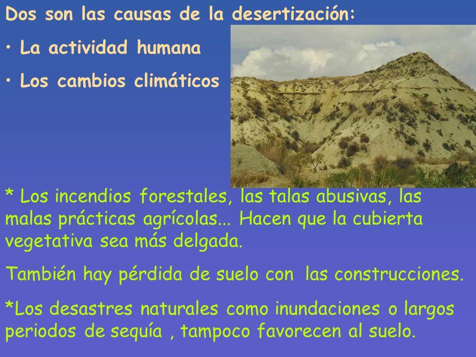 Desertización se considera al aumento de la extensión de los desiertos y además al proceso por el que las tierras fértiles se degradan en tierras árid