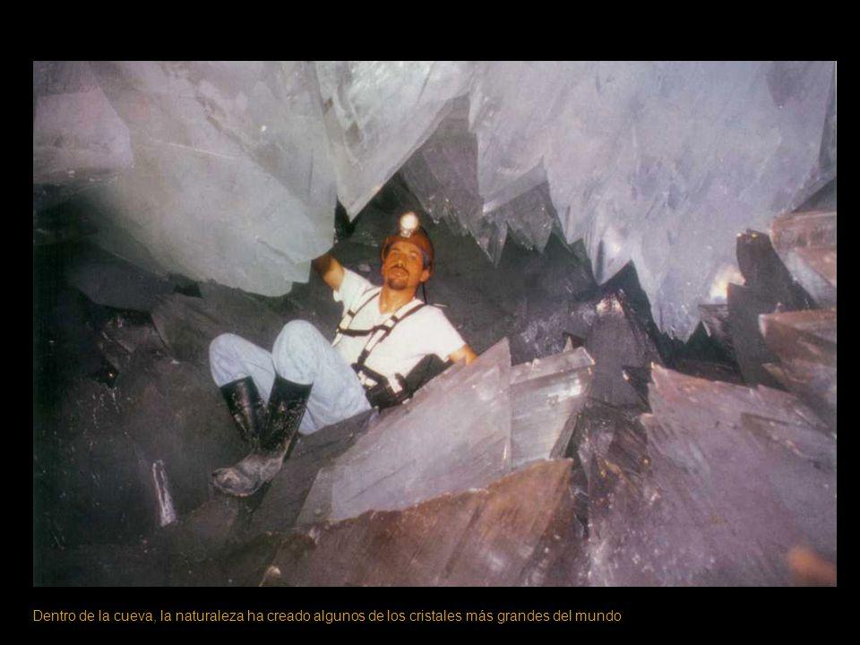 Dentro de la cueva, la naturaleza ha creado algunos de los cristales más grandes del mundo